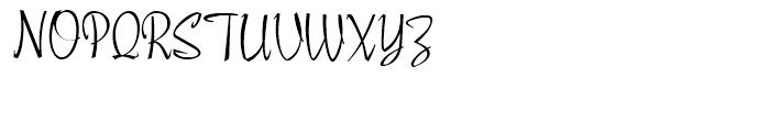 Poodle Pusher NF Regular Font UPPERCASE