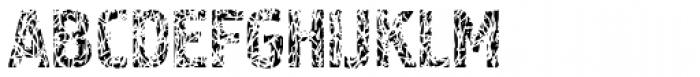 Pollock 4 Font UPPERCASE