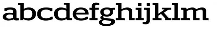 Polyphonic Wide Medium Font LOWERCASE
