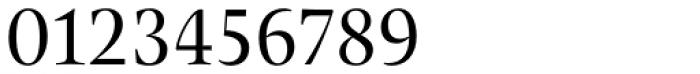 Pona Display Regular Font OTHER CHARS