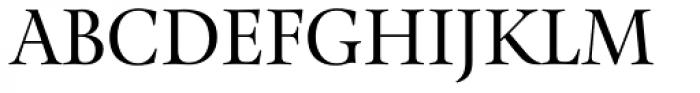 Pona Display Regular Font UPPERCASE