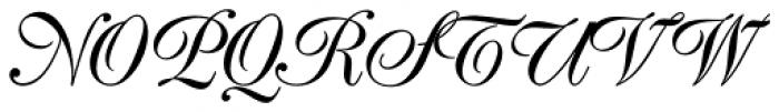 Poppl Exquisit Pro Regular Font UPPERCASE