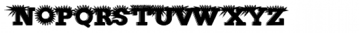 Porcupine Font LOWERCASE