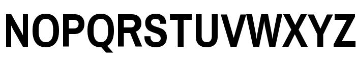 Pragati Narrow Bold Font UPPERCASE