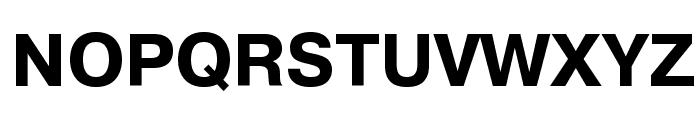PragmaticaCTT Bold Font UPPERCASE
