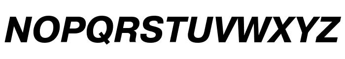 PragmaticaCTT BoldItalic Font UPPERCASE