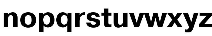 PragmaticaCTT Bold Font LOWERCASE