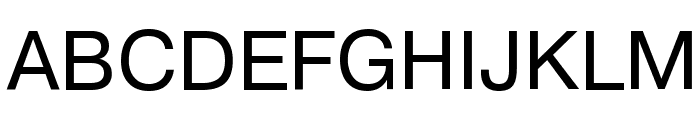 PragmaticaCTT Font UPPERCASE