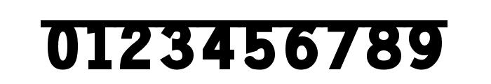 Prakrta Font OTHER CHARS