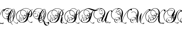 Precious Font UPPERCASE