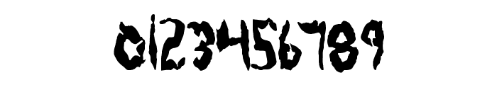 Protoplasm Condensed Font OTHER CHARS
