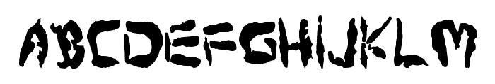 Protoplasm Condensed Font UPPERCASE