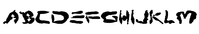 Protoplasm Font LOWERCASE