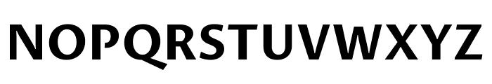 Proza Libre Bold Font UPPERCASE