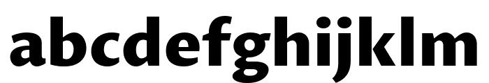 Proza Libre ExtraBold Font LOWERCASE