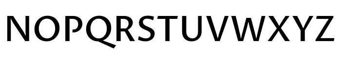 Proza Libre Medium Font UPPERCASE