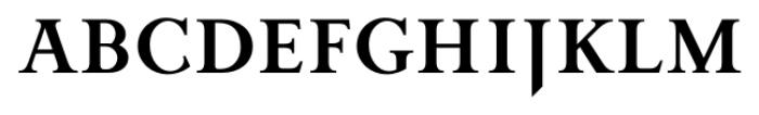 Priori Serif Bold Font UPPERCASE