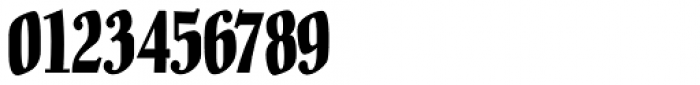 Pracht Antiqua NF Font OTHER CHARS