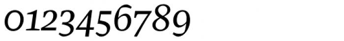 Pratt Nova Text Italic Font OTHER CHARS