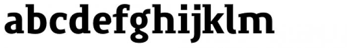 Precious Serif Black Font LOWERCASE