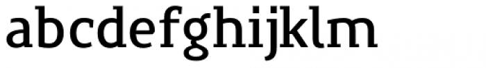 Precious Serif Demi Bold Font LOWERCASE