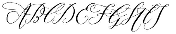 Prosciutto Font UPPERCASE