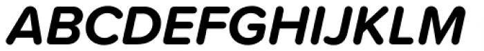Proxima Soft Bold Italic Font UPPERCASE