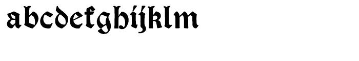 Psalter Gotisch Bold Regular Font LOWERCASE