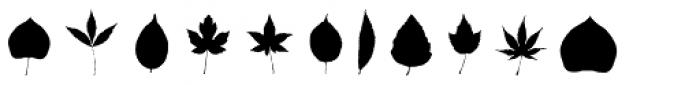 PSI Leaves Font UPPERCASE