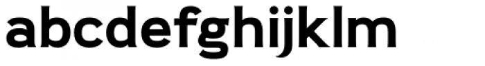 Pseudonym Wide Bold Font LOWERCASE