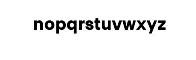 PT Areka Nova Bold.otf Font LOWERCASE