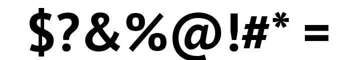 PT Sans Bold Font OTHER CHARS