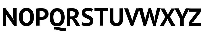 PT Sans Bold Font UPPERCASE