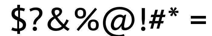 PT Sans Caption Font OTHER CHARS