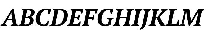 PT Serif Bold Italic Font UPPERCASE