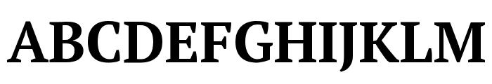 PT Serif Bold Font UPPERCASE