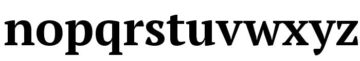 PT Serif Bold Font LOWERCASE