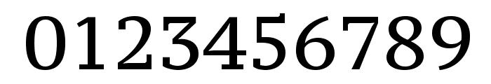 PT Serif Caption Font OTHER CHARS