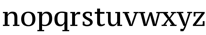 PT Serif Caption Font LOWERCASE
