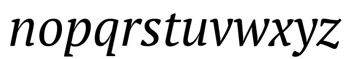 PT Serif Italic Font LOWERCASE