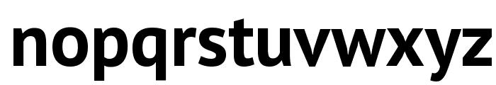 PT Sans Bold Font LOWERCASE