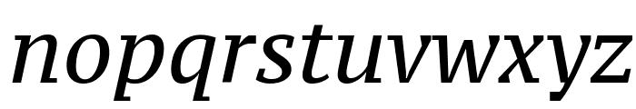 PT Serif Caption Italic Font LOWERCASE