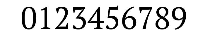 PT Serif Font OTHER CHARS