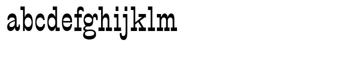 PT Barnum Regular Font LOWERCASE