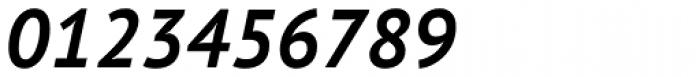 PT Sans Pro Bold Italic Font OTHER CHARS