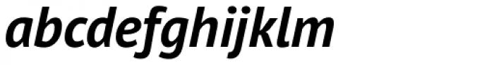 PT Sans Pro Bold Italic Font LOWERCASE