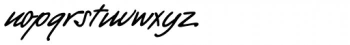 PT Script Barguzin Font LOWERCASE