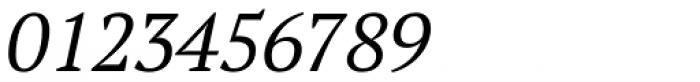PT Serif Pro Book Italic Font OTHER CHARS