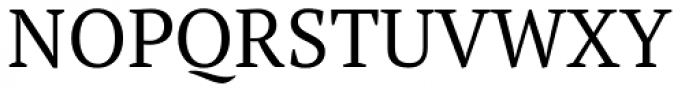 PT Serif Pro Book Font UPPERCASE