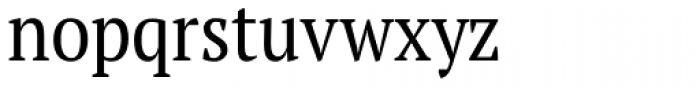 PT Serif Pro Narrow Book Font LOWERCASE
